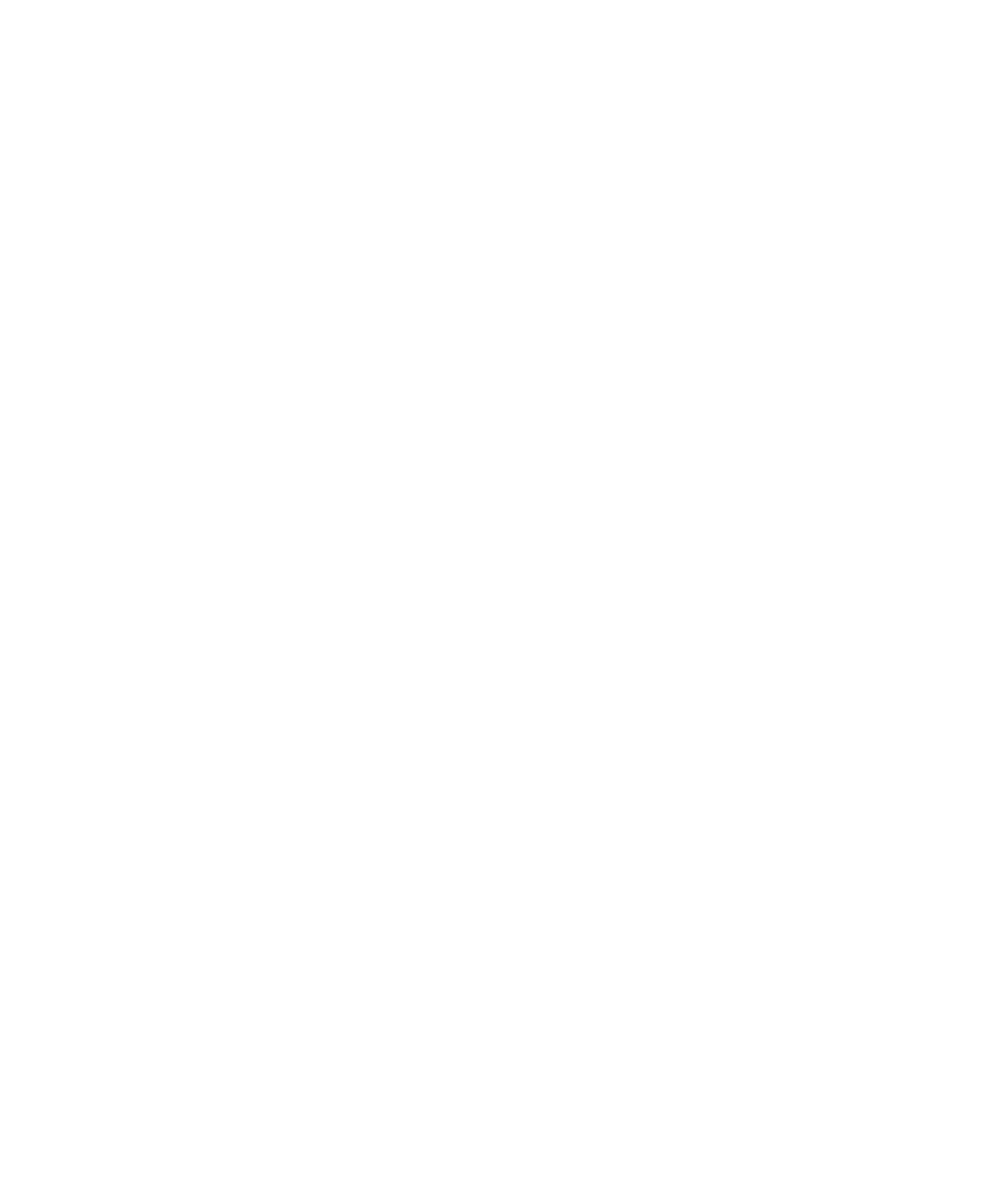 Zsidai Group logo